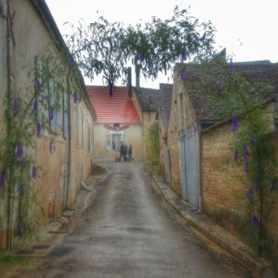 arc fleuri rue Irancy