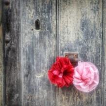 détail porte fleur Irancy