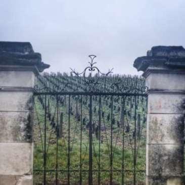 porte sur vigne à Irancy, Bourgogne