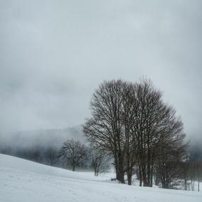 paysage sentier les baganiers Bellefontaine