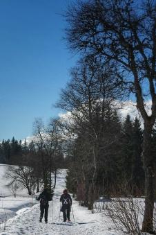 parcourir le sentier les baganiers, Bellefontaine