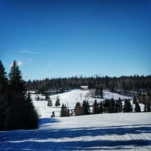 paysage sentier les baganiers sous le soleil , Bellefontaine
