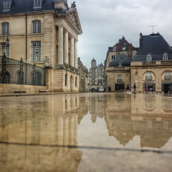 Puddle Place St Michel, Dijon, Bourgogne