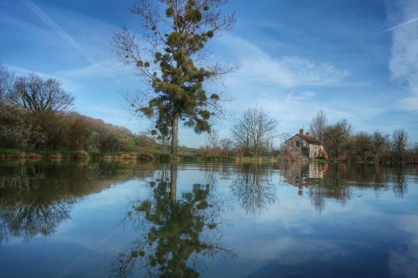 jeu de reflets Canal de Bourgogne entre Pouillenay et Venarey les Laumes