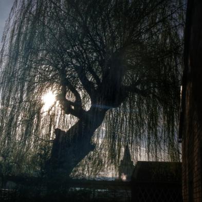 Lumière du matin sur Pouillenay