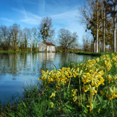 printemps Canal de Bourgogne entre Pouillenay et Venarey les Laumes