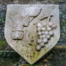 détail domaine FlavignyAlesia Bourgogne