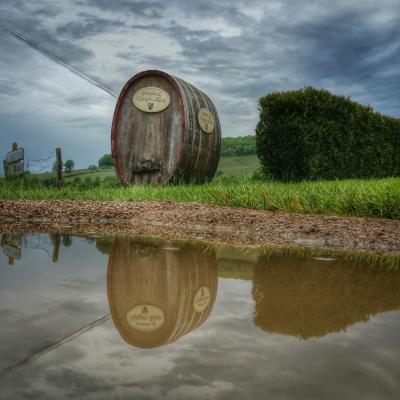 puddle Domaine de FlavignyAlesia Bourgogne