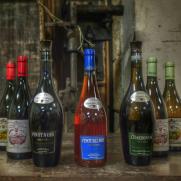 vins du domaine de FlavignyAlesia Bourgogne