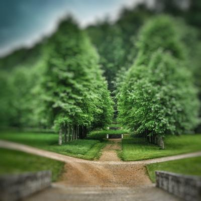à la croisée des chemins dans le parc du château de Bussy-Rabutin Bourgogne