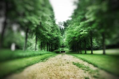 perspective dans le parc du château de Bussy-Rabutin Bourgogne
