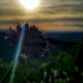 Prendre le temps d'un coucher de soleil Roche Percée, Antheuil, Bourgogne