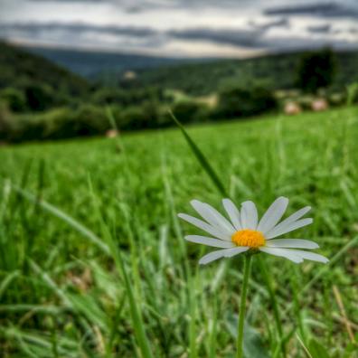 Antheuil, Vallée de l'Ouche, Bourgogne