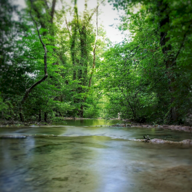 Le Bel Affreux et ses cascades de Tuf, Antheuil, Vallée de l'Ouche, Bourgogne
