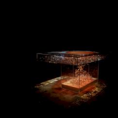 Cabinet de curiosité, La Maison, Vougeot, Bourgogne, France
