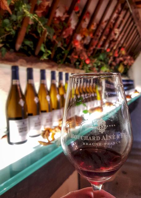 Dégustation sous-bois, Bouchard Aîné&Fils, Vente des vins,Beaune, Bourgogne, France