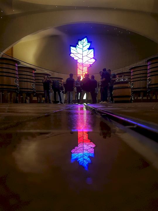 vitrail Chai à vins rouges Cuverie Les Ursulines JC Boisset Nuits-saint-Georges, Bourgogne