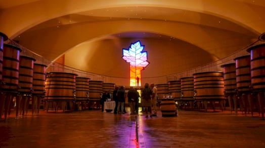 Chai à vins rouges Cuverie Les Ursulines JC Boisset Nuits-saint-Georges, Bourgogne
